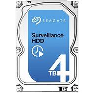 Seagate Surveillance 4000 GB + Rettungs