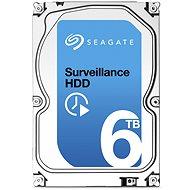 Seagate Surveillance 6000 GB + Rescue