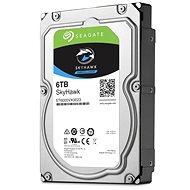 Seagate SkyHawk HDD 6TB