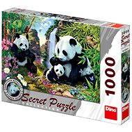 Dino Pandas