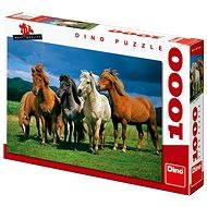 Dino Icelandic horses