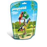 Playmobil 6653 Papoušci a tukan na stromě - Stavebnice