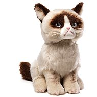 Grumpy cat - Internet sensation