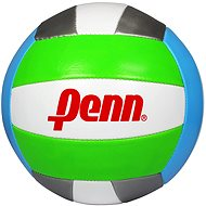 Penn Volleyball ball - silver