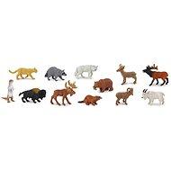 Tuba - Zvieratá Severnej Ameriky