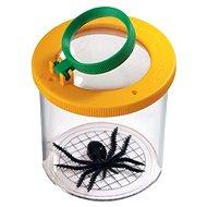 Glas auf Spinnen