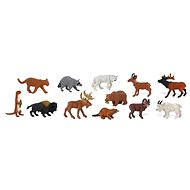 Vak - Zvířata Severní Ameriky - Vzdělávací sada