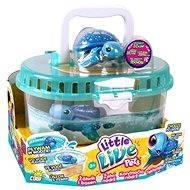 Little Live Pets - Želví nádrž - Herní set