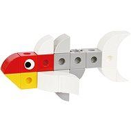 World Life - Mandarinfish