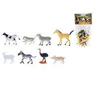 Animals - Farm