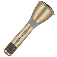 Eljet Karaoke Microphone Advanced Gold
