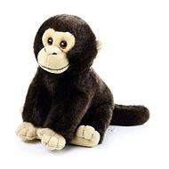 Rappa Plyšová opice