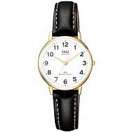 Dámské hodinky Q&Q QZ01J104Y