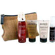 ALTERNA Bamboo Volume Hair On The Go Kit