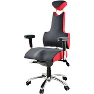 Therapia Professional PRO300 - anthracite / red, L