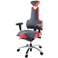 Therapia Energy M - light grey/strawberry - Office Chair