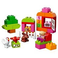 LEGO DUPLO 10571 Ružový box plný zábavy - Stavebnica