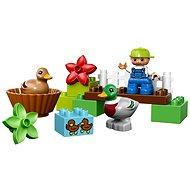 LEGO DUPLO 10581 Lego Ville, Divoké kachny