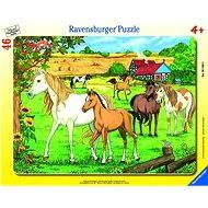Ravensburger Koně