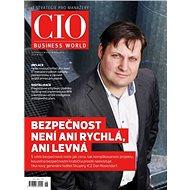 CIO Business World