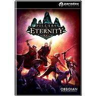 Pillars of Eternity: Hero Edition - Herní doplněk