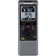 Olympus VN-731PC gray + TP8 Telephone Pickup - Digital Voice Recorder