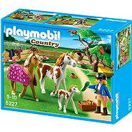 PLAYMOBIL 5227 Paddock with Horses and Pony