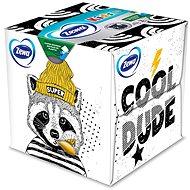 ZEWA Zoo Box (60 Stück)