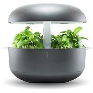 Plantui 6 Smart Garden, šedá - Květináč