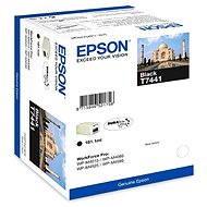 Epson T7441 černá - Cartridge