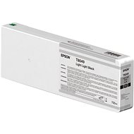Epson T804900 light gray