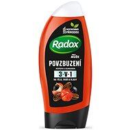 RADOX Men Feel Powerful 2in1 250 ml