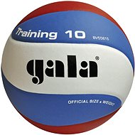 Training GALA - Volleyball