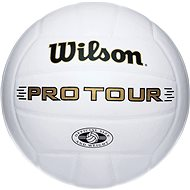 Wilson Pro Tour Indoor SZ5 - Ball