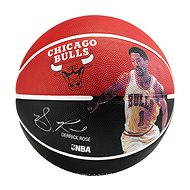 Spalding NBA ball player Derrick Rose