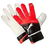 Puma EvoPower Grip 3.3 RC Puma Blac 11 - Gloves