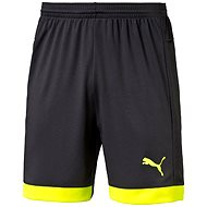 Puma IT EvoTRG Shorts Asphalt-Safet L
