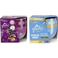 Glade Berry Delight + Winter Flowers