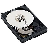 "DELL 3.5 ""HDD 1TB 3G SATA 7200 rpm. Cabled"