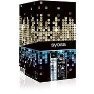 SYOSS Salonplex & Fiber Flex kazeta