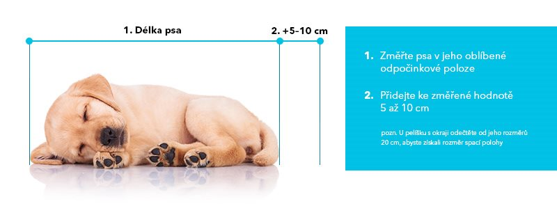 Jak změřit psa pro výběr pelíšku