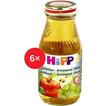 HiPP BIO Jablečno-hroznová šťáva - 6× 200 ml (9062300402497)