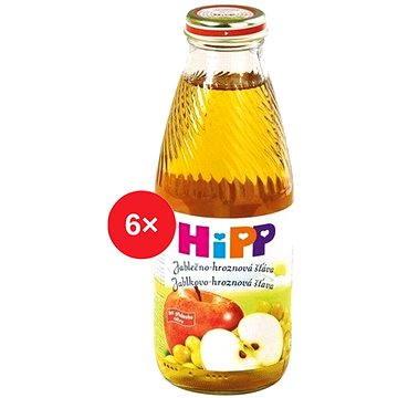 HiPP BIO Jablečno-hroznová šťáva - 6× 500 ml (9062300406457)
