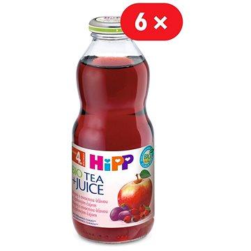HiPP BIO Nápoj s ovocnou šťávou a šípkovým čajem - 6× 500 ml (9062300414285)