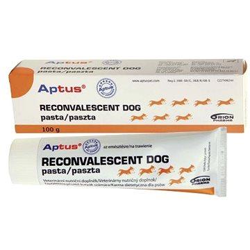 Aptus Reconvalescent Dog pasta 100 g (6432100013187)