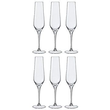 Crystalex Sklenice na šampaňské REBECCA 195ml 6ks (40797/195)