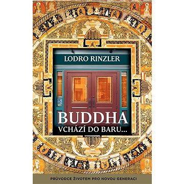 Buddha vchází do baru (978-80-7370-316-5)