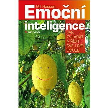 Emoční inteligence (978-80-247-5630-1)