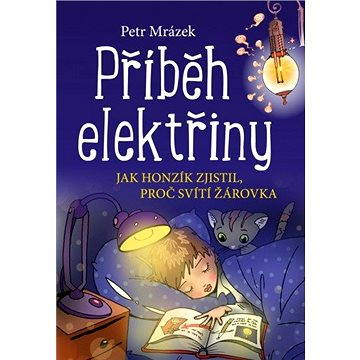 Příběh elektřiny (978-80-266-1015-1)