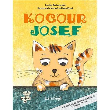 Kocour Josef (978-80-271-0280-8)